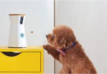 Furbo, la telecamera di sicurezza per cani