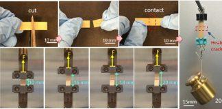 Materiale flessibile capace di rigenerarsi