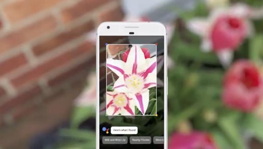 Google Lens: il vostro smartphone diventa in grado di vedere e riconoscere oggetti