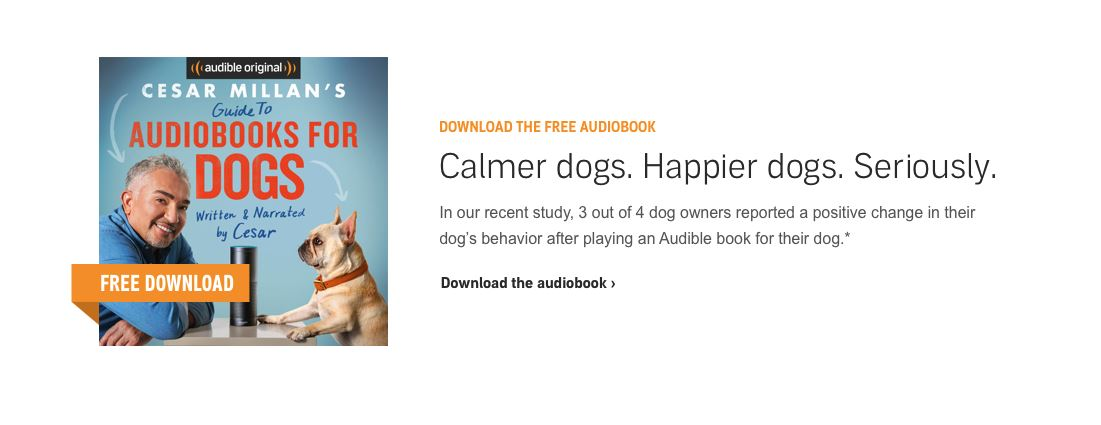 audible for dogs 2