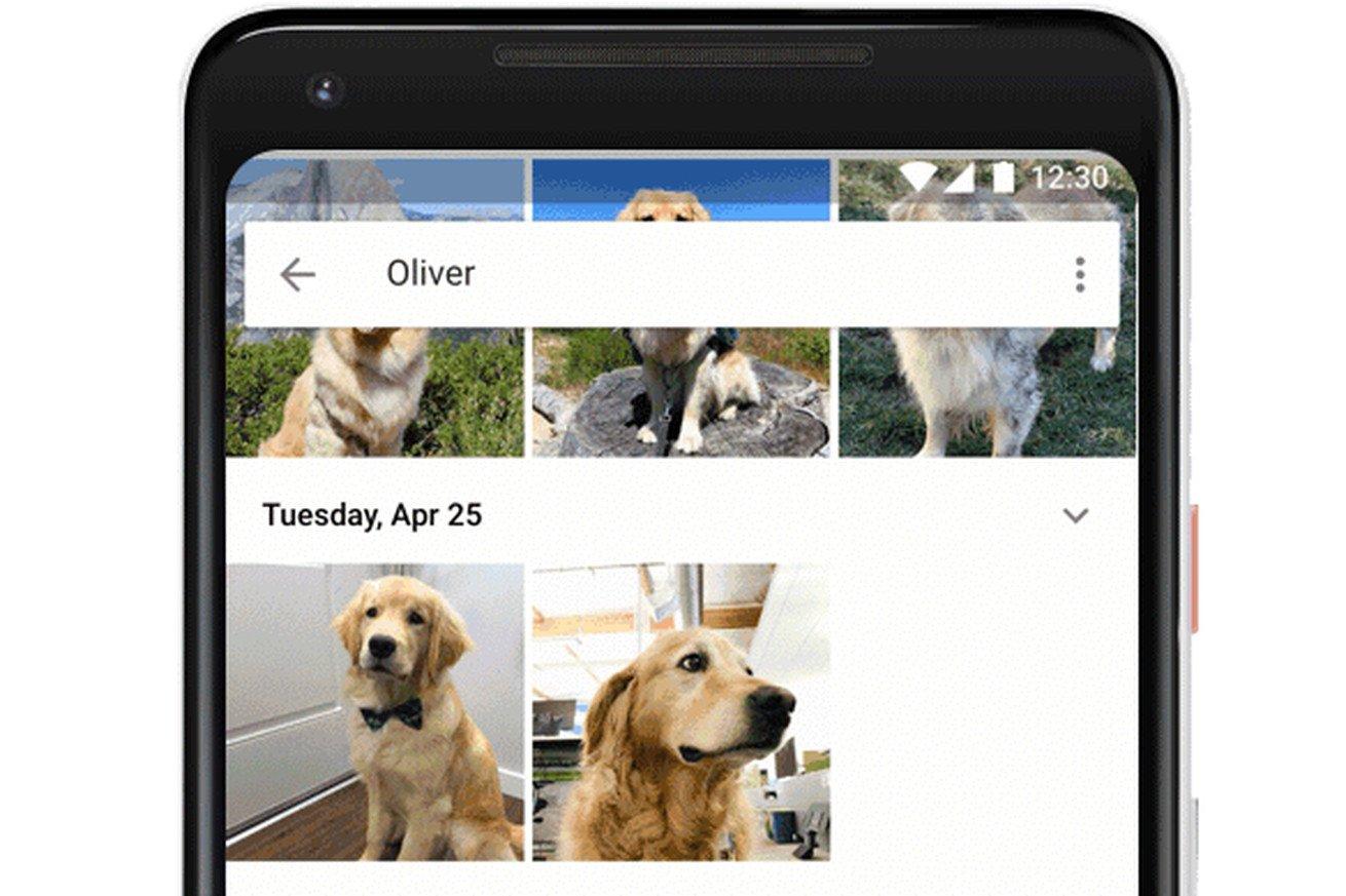 google-foto-riconoscimento-facciale-animali-banner