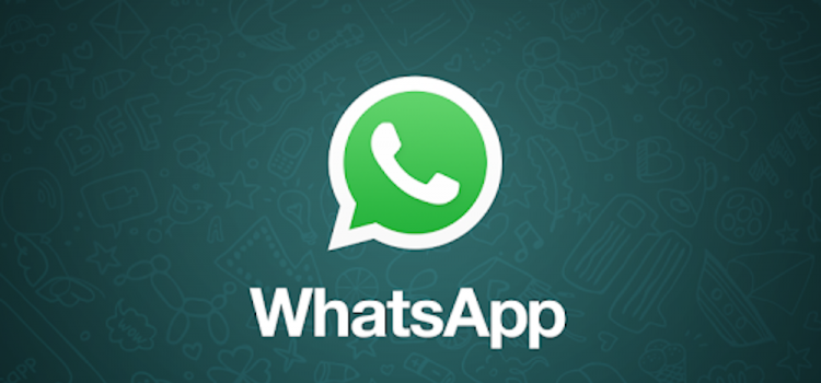 whatsapp novità beta