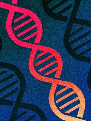 microsoft excel menselijke genetica